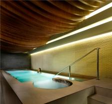 The Ritz-Carlton Spa - vitality pool