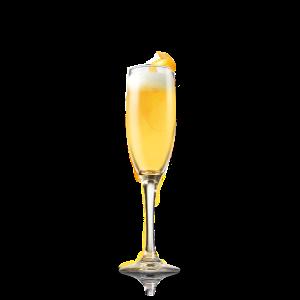 Malta_mimosa-1