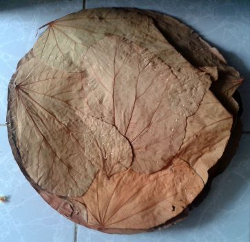 Vistaraku_(An_Indian_eating_plate)_made_with_broad_dried_leaves_02