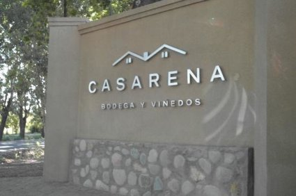 casarena-winery-and-vinyards