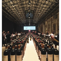Chianti Classico Tasting, Florence, Italy